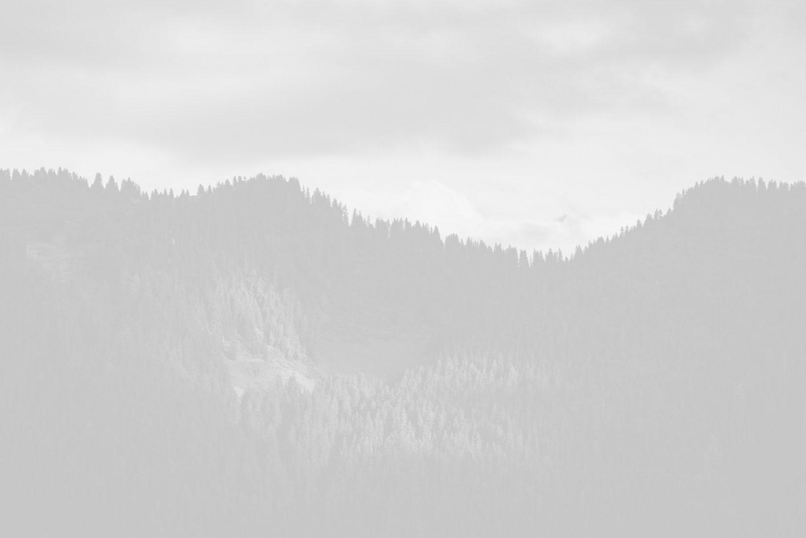 image placeholder 29 min scaled