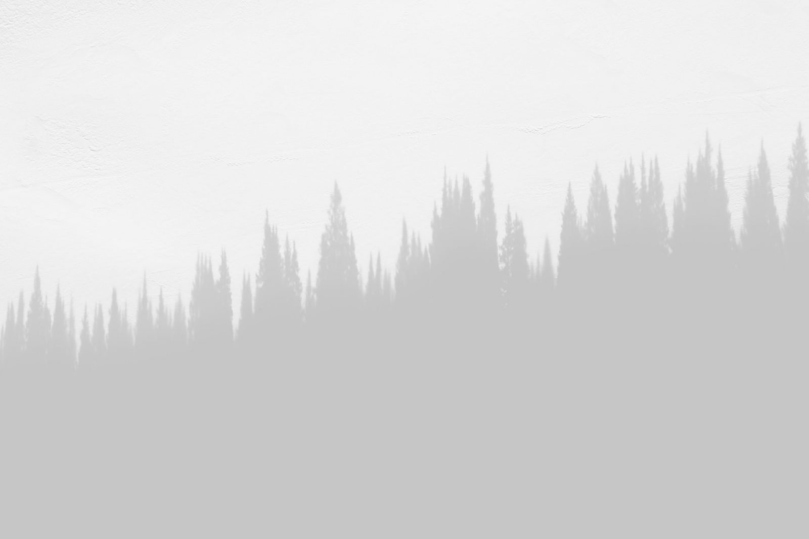 image placeholder 5 min scaled
